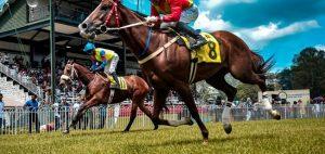 Zirgu jāšanas spēles likmju veidi totalizatorā